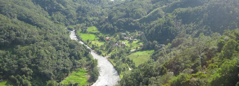 The jungles of Kiulu not far from Kota Kinabalu, Sabah